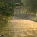 canal_du_midi_24-4-098_0